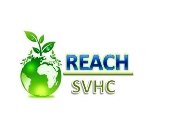 REACH报告
