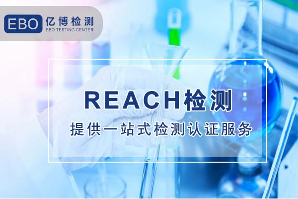 reach检测报告
